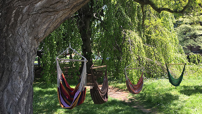 Four Hammock Chairs- Hang Out with friends