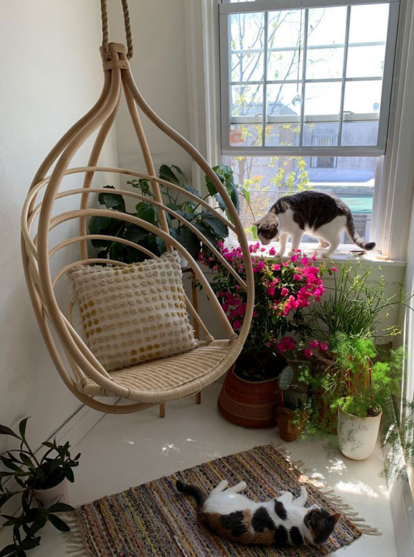 teardropp-woven-hanging-chair-and-two-cats